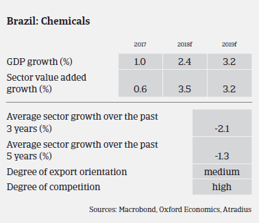 chemicals industry overview Brazil