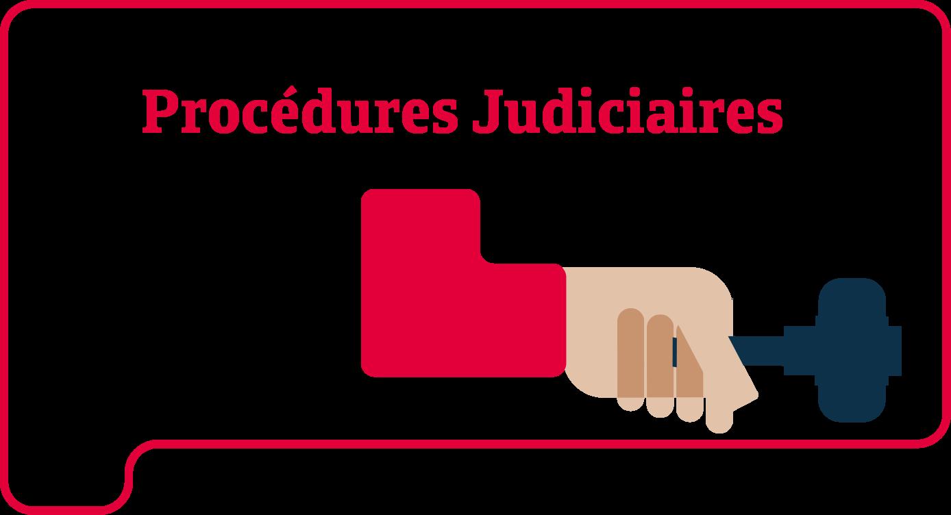 Procédures Judiciaires